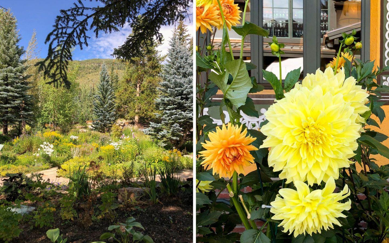 summer in vail - vail village - vail flowers