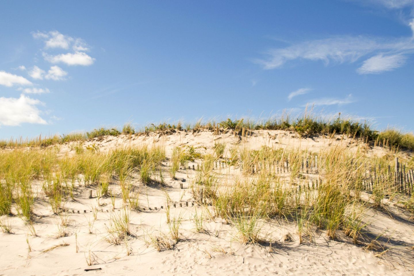 fall in the hamptons - southampton - flying point beach