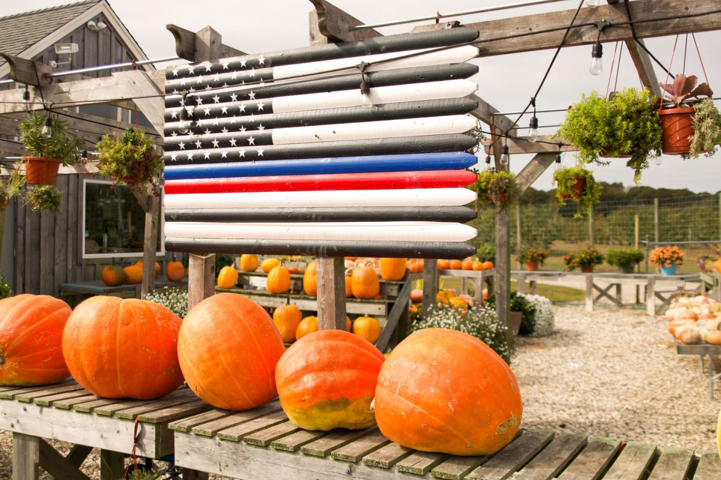 fall in the hamptons - milk pail hamptons - pumpkin patch hamptons