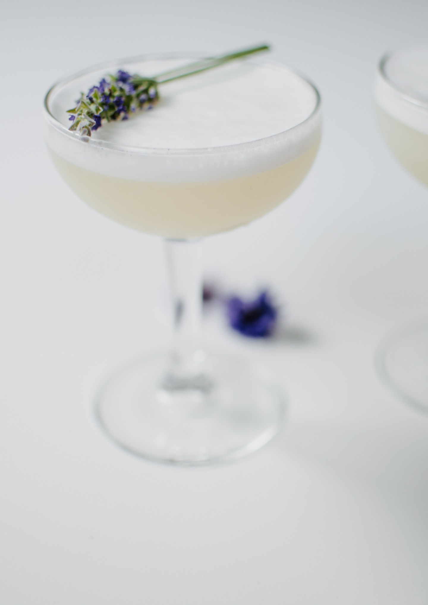 lavender gin fizz cocktail recipe