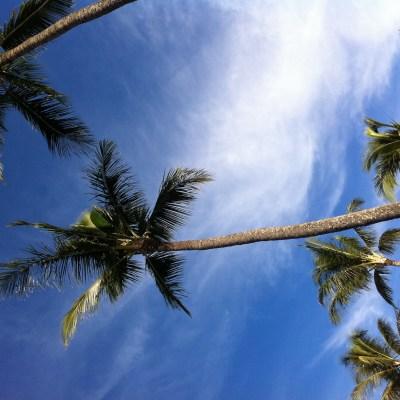 I {heart} Maui!