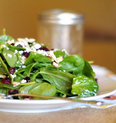 Spinach Salad with Gorgonzola, Cranberries, Almonds and Honey Garlic Vinaigrette