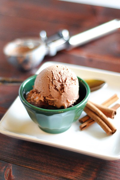 Cinnamon Milk Chocolate Frozen Yogurt from HeathersDish.com