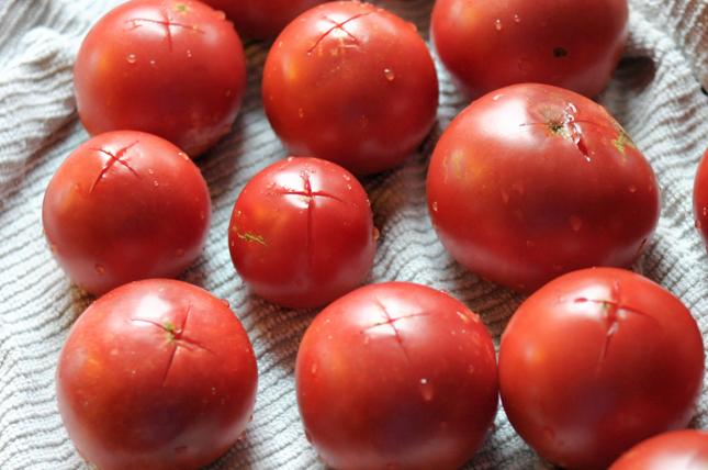 How to Make Tomato Sauce from Fresh Tomatoes || HeathersDish.com