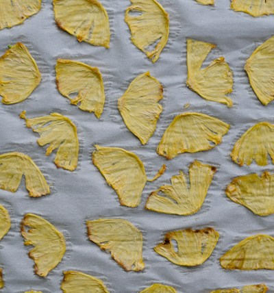 Homemade Pineapple Chips are an easy, healthy, delicious snack that can be made in your own oven. No dehydrator needed!