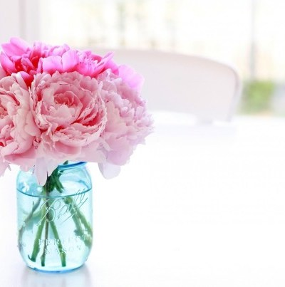 pink peonies in a blue jar