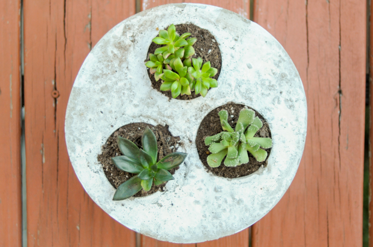 Simple DIY Concrete Succulent Planter gives those adorable little succulents the perfect cozy space to thrive!