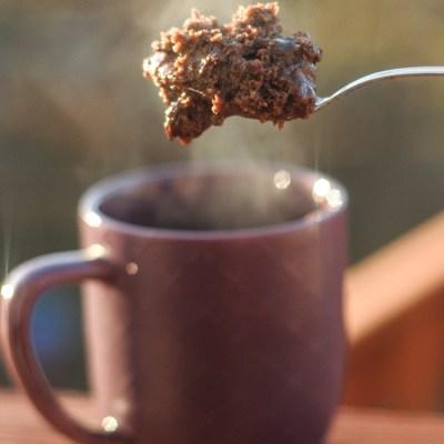 Protein-Packed Chocolate Fudge Mug Cake