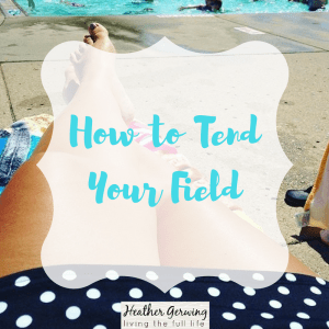 How to Tend Your Field