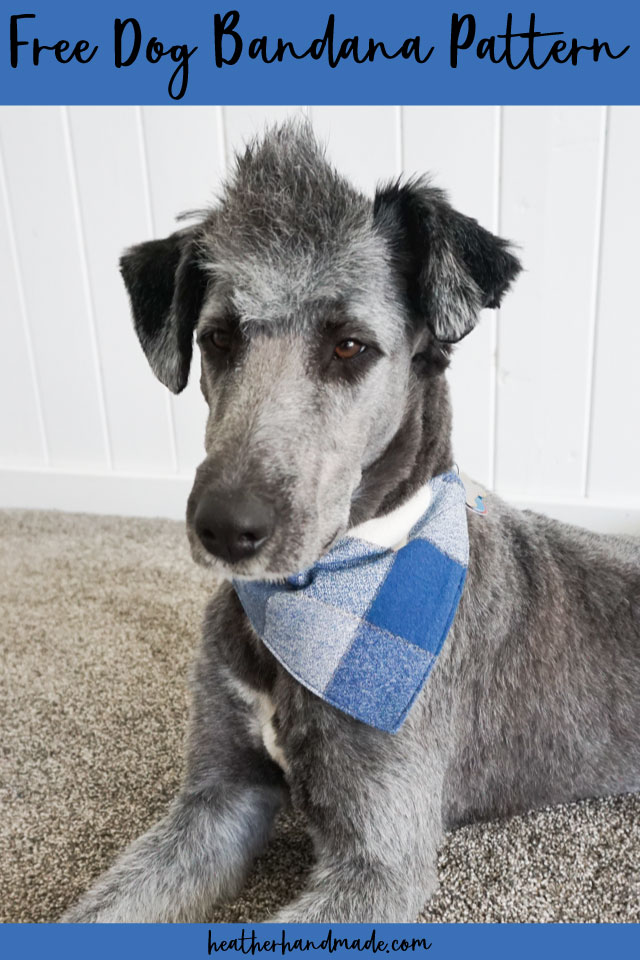 DIY Dog Bandana - Free Sewing Pattern