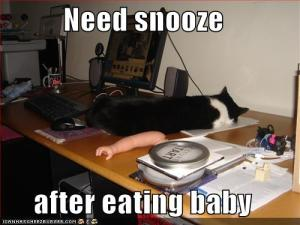funny-pictures-snooze-eat-baby
