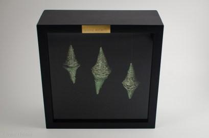 3 Saltatorias woodsworthii