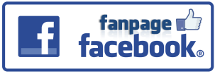 FB Fanpage button