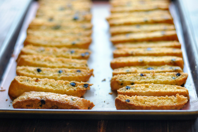 Blueberry Coconut Biscotti