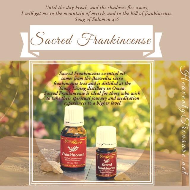 Sacred Frankincense
