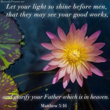 Scripture bible verse Matthew