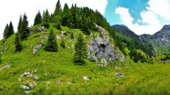 green-summer-in-the-valley-3936-706
