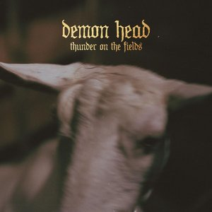 Demon Head – Thunder on the Fields