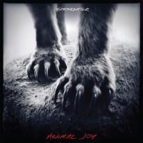 Shearwater – Animal Joy