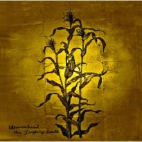 Wovenhand – The Laughing Stalk
