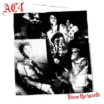 AC4 – Burn the World