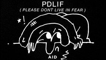 Bon Iver - PDLIF