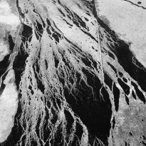 Jesse Draxler – Reigning Cement