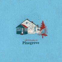 Pinegrove – Amperland, NY