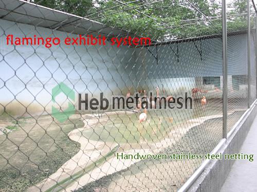 Flamingo exhibit, flamingo cages, flamingo enclosures