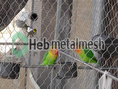 parrots enclosures, parrots cages, parrots exhibit, macaw enclosures, macaw cage, macaw exhibit