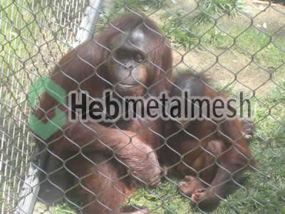 Ape exhibit design, zoo Ape enclosures plans, zoo Ape mesh supplies