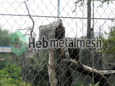 stainless steel mesh for eagle protection netting, eagle barrier mesh