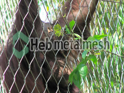 wire mesh for gorilla cage mesh, gorilla perimeter netting, gorilla roof netting supplies