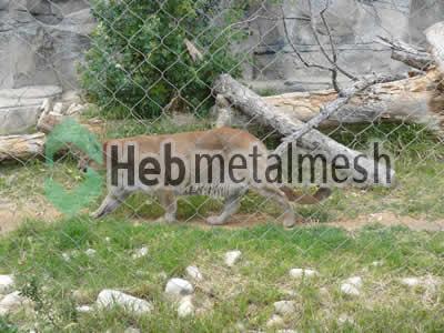 lion protection fence, lion enclosures netting, lion exhibit control mesh specifications