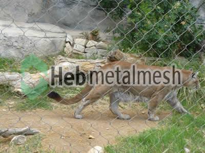 lion exhibit fence manufacturer, lion enclosure mesh, lion cage mesh