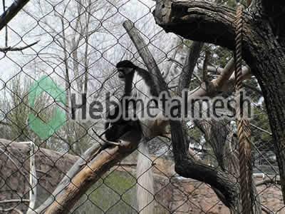 stainless steel monkey roof netting,monkey perimeter mesh, monkey fencing