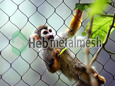 wire mesh for monkey cage mesh, monkey perimeter netting, monkey roof netting supplies