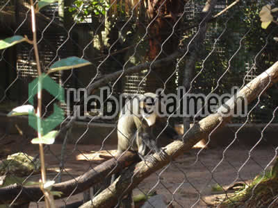 monkey exhibit fence manufactruer, monkey enclosure mesh, monkey cage mesh