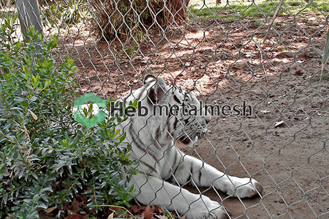 wire rope mesh suppliers – tiger mesh, tiger fence, tiger netting, tiger cage fence, tiger enclosure fencing, tiger safety mesh
