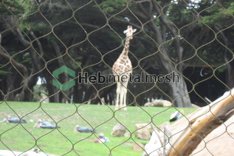 wire rope mesh suppliers – Deer mesh, Deer fence, Deer netting, Deer cage fence, Deer enclosure fencing, Deer safety mesh