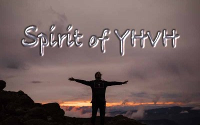 29th July 2020: Our Daily deLIGHT~4th Day-Spirit of YHVH