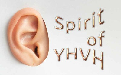 13th January 2021: Our Daily deLIGHT~4th Day-Spirit of YHVH