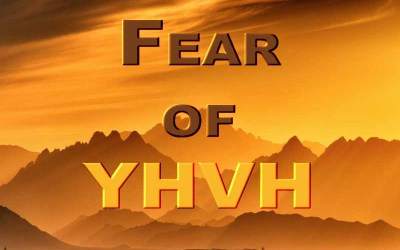 20th February 2021: Our Daily deLIGHT~7th Day-Fear of YHVH