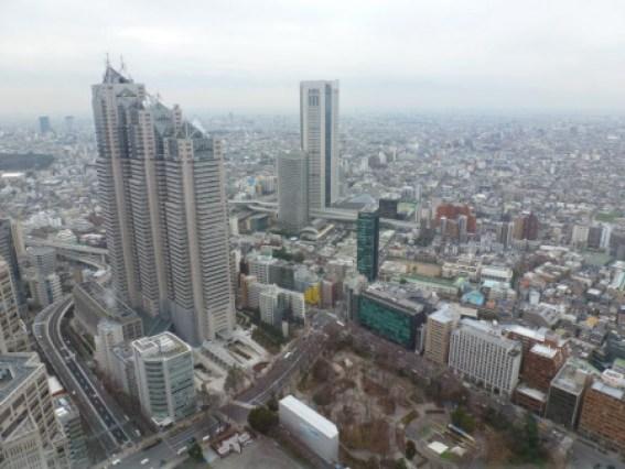 סיור מודרך בעברית בטוקיו
