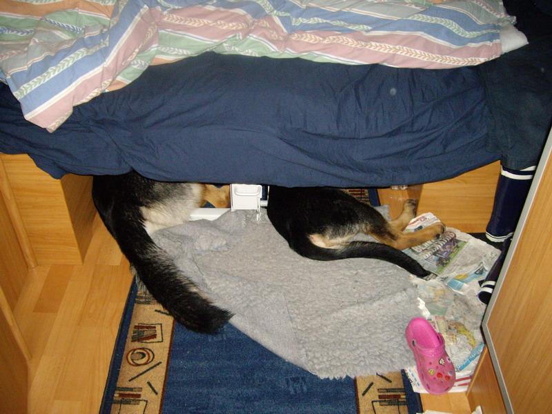 Å+C sover i husvagnen (2)