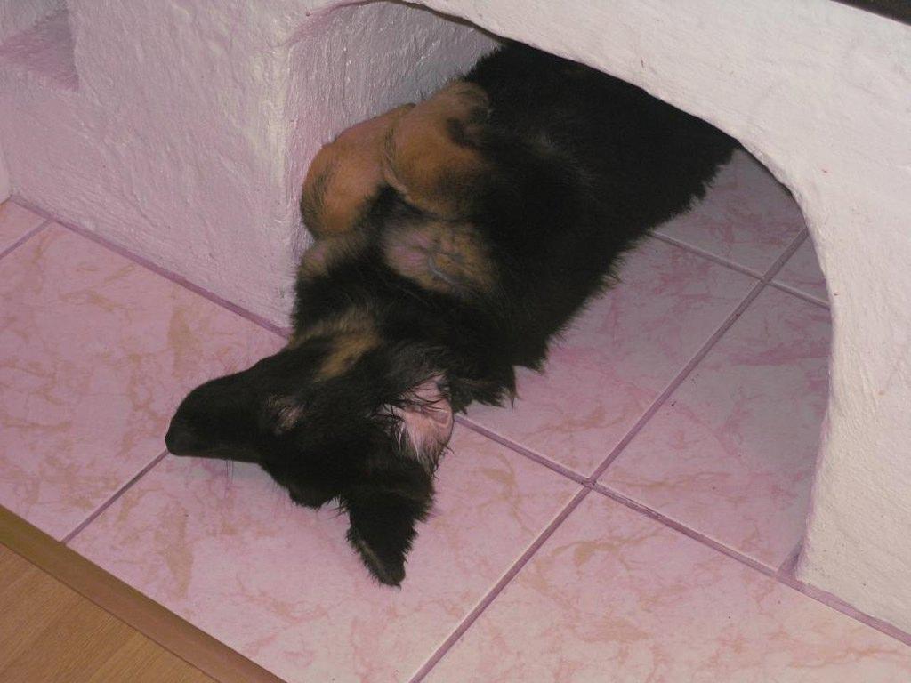 Sover skönt i min grotta_1024x768