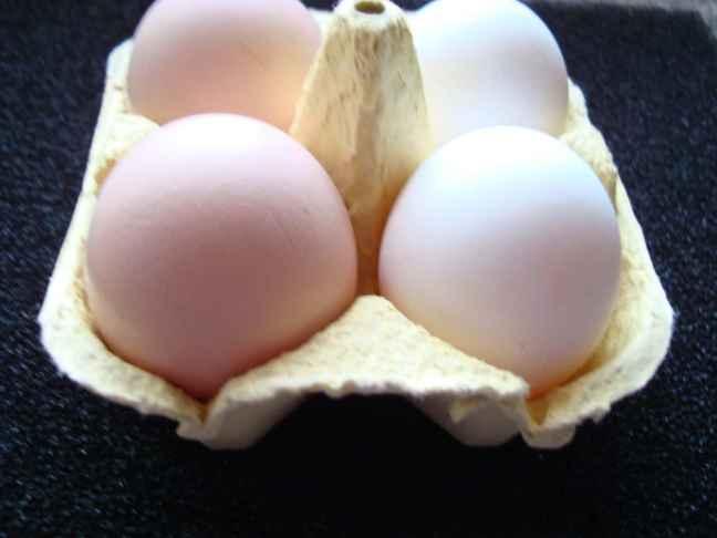 Egg comparison Partridge Leghorn