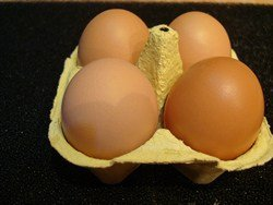 Buff Barred Eggs