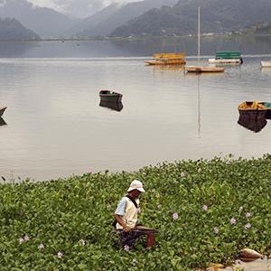 Pokhara : d'eau et d'air