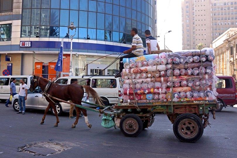 Alexandrie - Transport de tapis